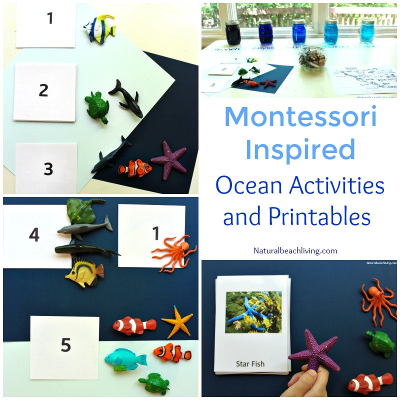 12 More Months of The Best Montessori Activities, Practical life, Geography, Sensorial, Preschool Themes, Printables, Montessori gifts, Science and more
