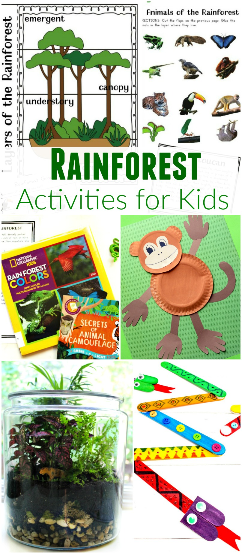 The Ultimate Rainforest Activities Kids Theme - Natural ...