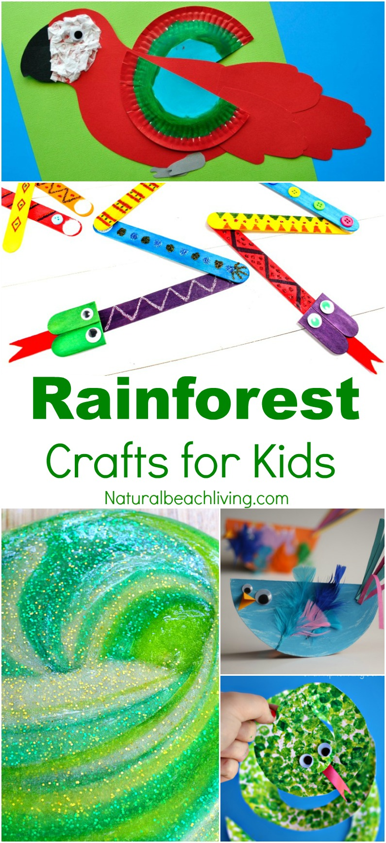 Preschool rain stick craft - 10 Amazing Rainforest Crafts Kids Can Make Rainforest And Jungle Slime Paper Plate