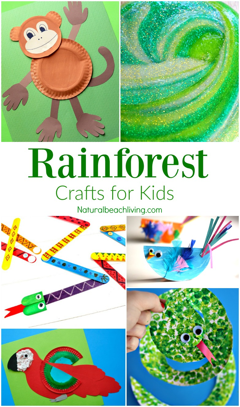 10+ Amazing Rainforest Crafts Kids Can Make, Rainforest and Jungle Slime, Paper Plate Monkey Craft, Rain Stick, Rainforest Preschool Theme, Crafts for Kids