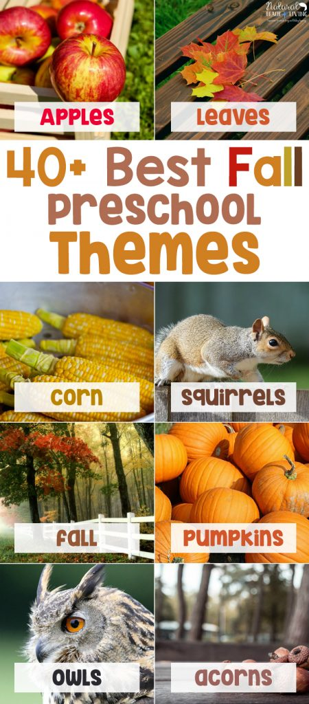 40+ Fall Preschool Themes and activities