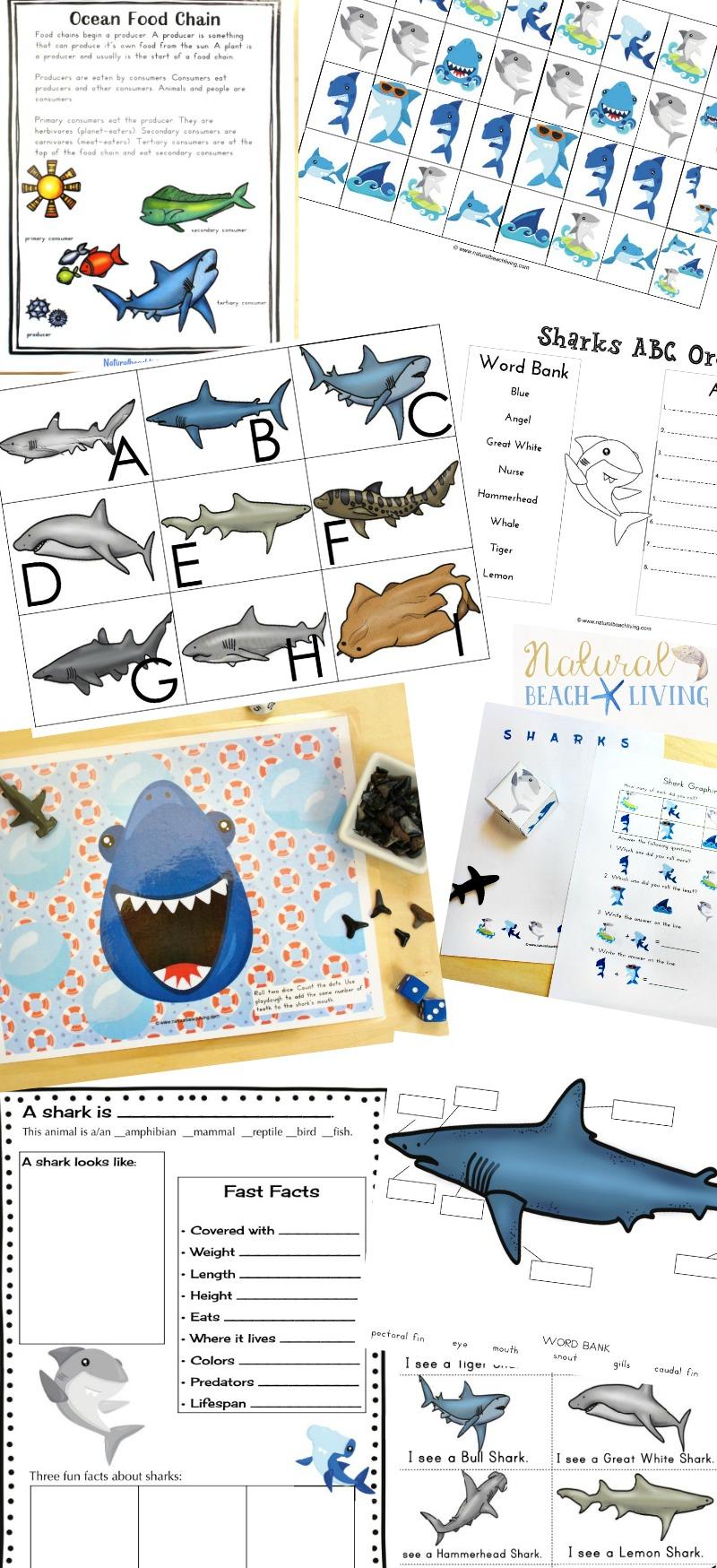 The Best Shark Printable Activities for Kids, Shark Week Ideas, Shark Week for Kids, Shark Theme, Parts of a shark