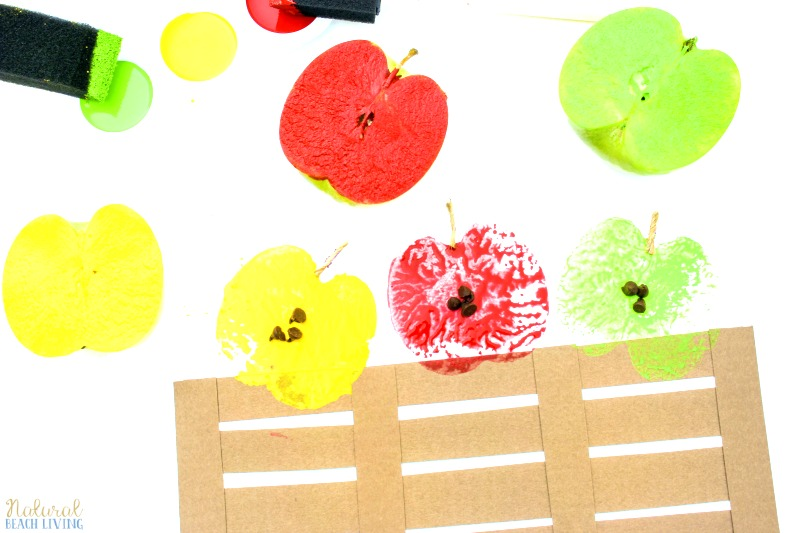 How to Make The Most Adorable Apple Stamping Craft with Kids, Apple Stamping, Apple Activities, Apple Crafts, Apple theme for preschoolers, Fall Crafts, Art