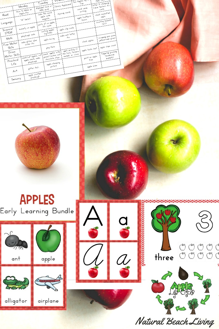 fall preschool activities and free printables natural beach living