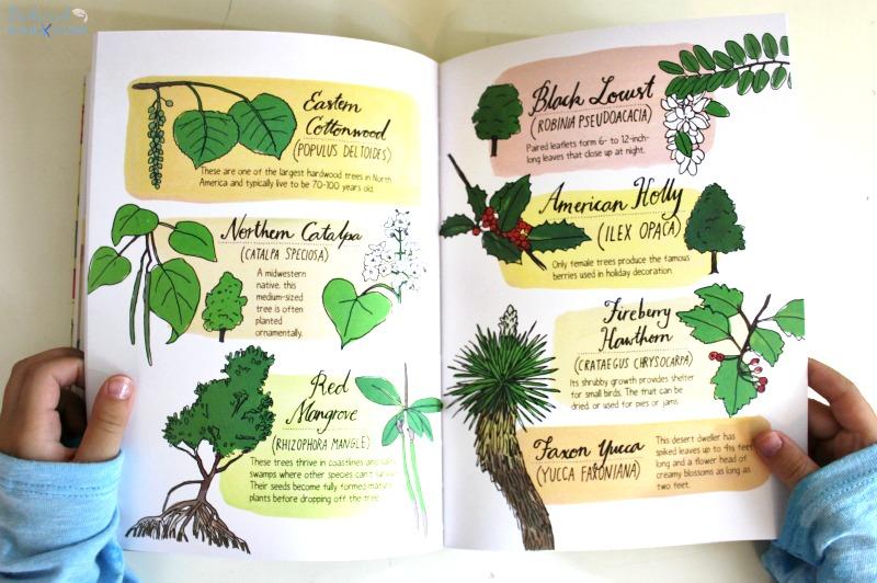 Nature Anatomy Book,