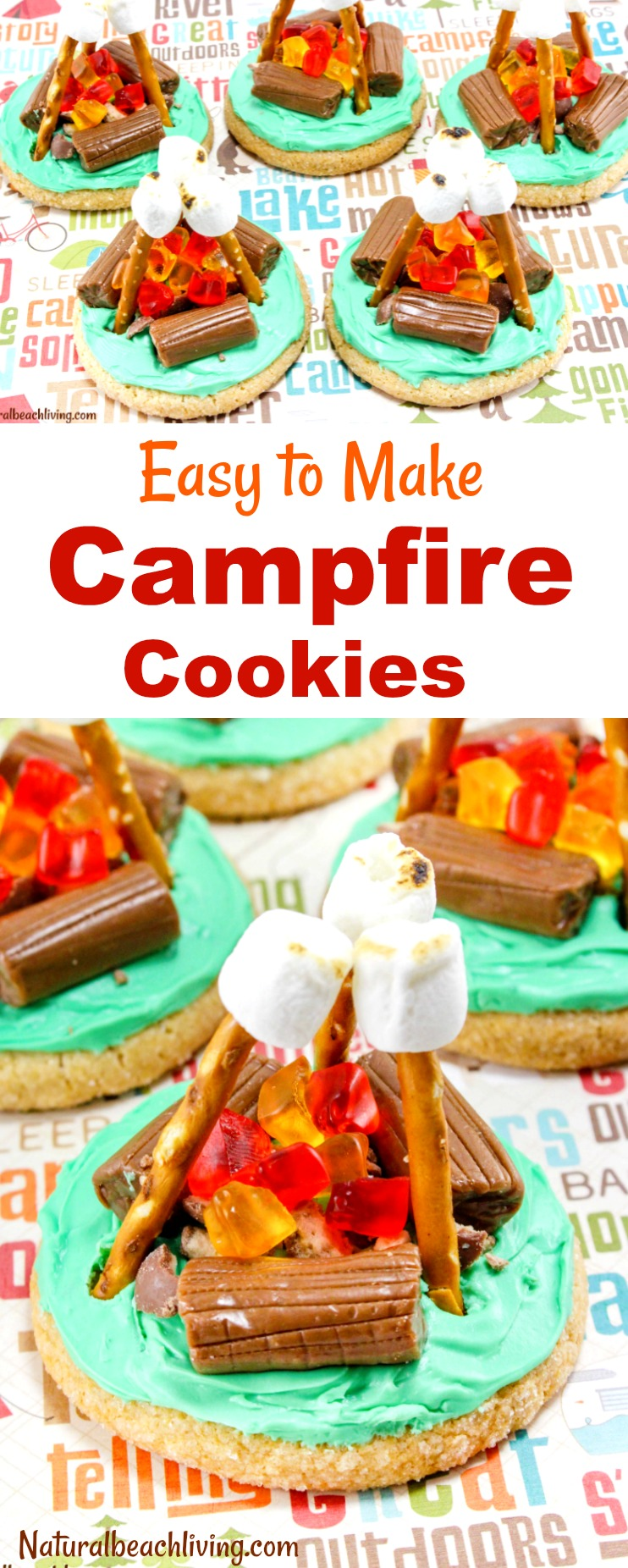 How To Make Campfire Cookies Everyone Will Love Camping Theme Party Ideas