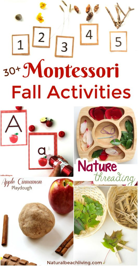 30+ Montessori Fall Activities, Fall Activities, Montessori Themes