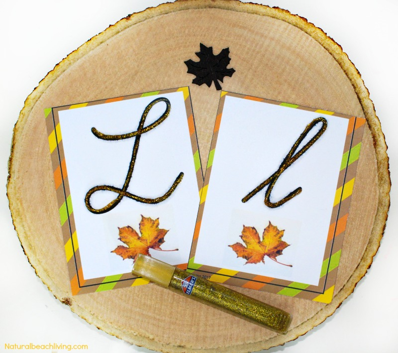 The Best Kindergarten and Preschool Leaf Theme Lesson Plan, Preschool Themes, Leaf Activities Preschool, Reggio, Preschool Curriculum, Alphabet, Leaves preschool