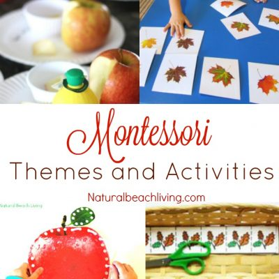 Fun September Montessori Themes and Activities