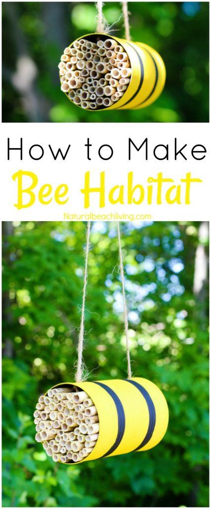 How to make a Bee Habitat, Mason Bees, Bee Unit Study