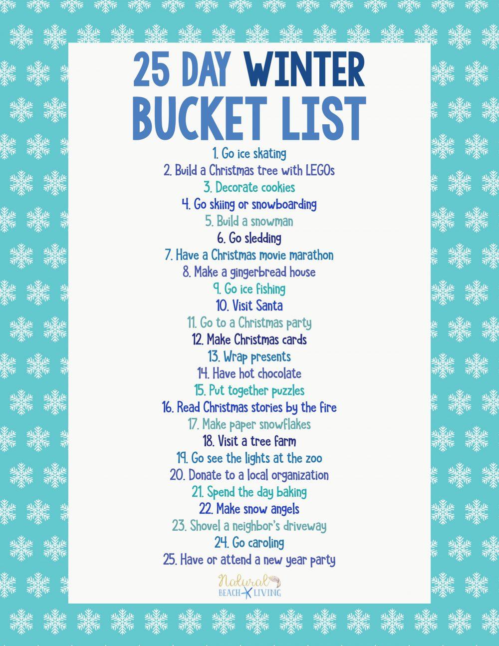 25 Winter Bucket List Ideas For Family Fun Natural Beach