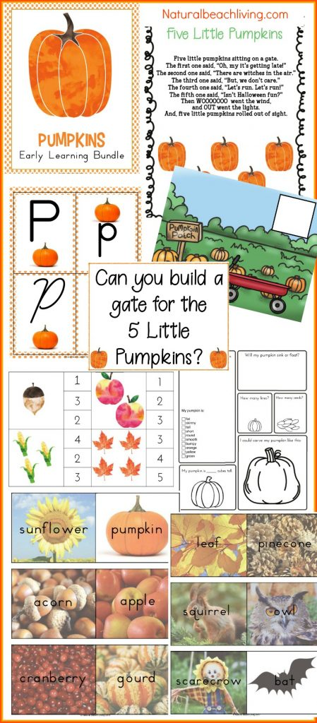 pumpkin preschool theme, pumpkin kindergarten themes, Homeschool curriculum, Lesson plans for Fall Themes, Alphabet, hands on activities, printables, preschool pumpkin theme