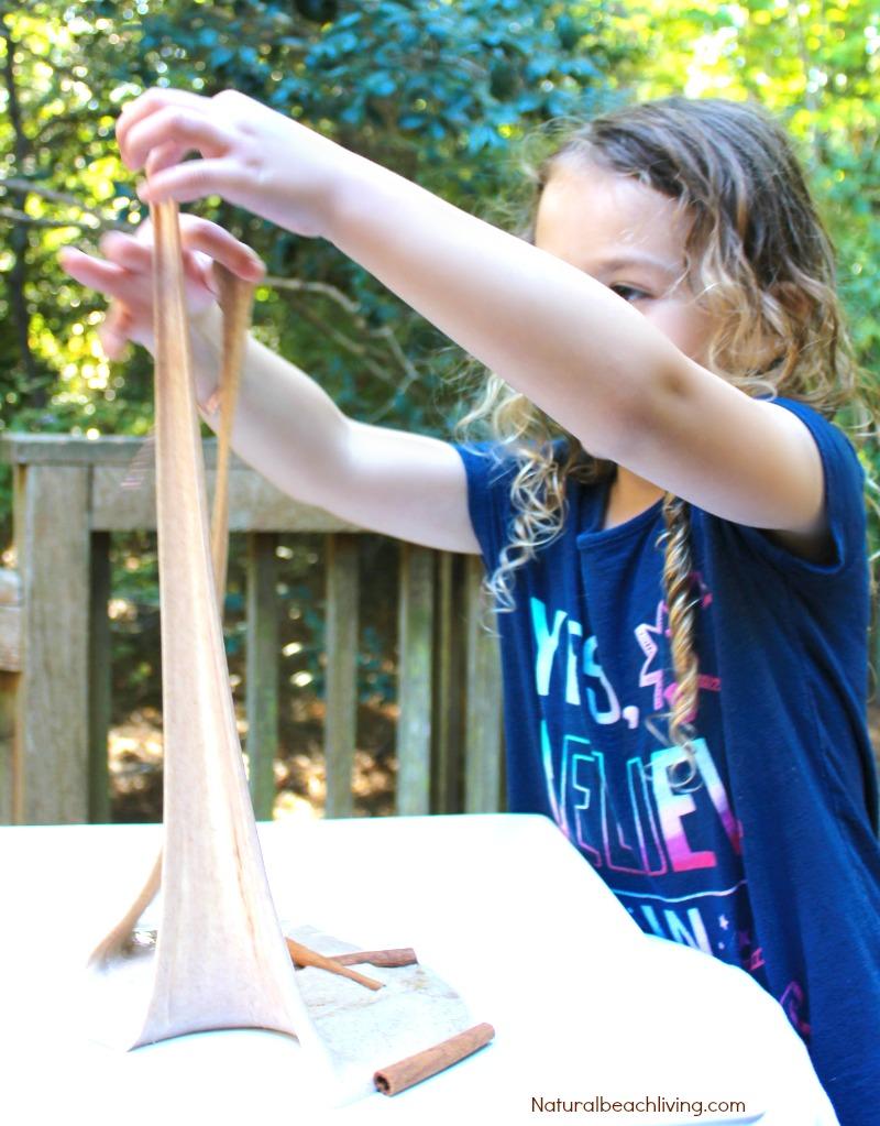 How to Make Cinnamon Jiggly Slime Recipe, Homemade Slime Recipe, DIY Slime, Cinnamon Slime Recipe, Cinnamon Sensory Play, Fall sensory play, Easy Slime Recipe, Borax Slime #slime #slimerecipe #sensory