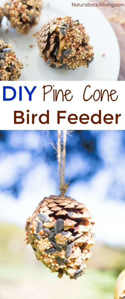 How to Make The Best Birdseed Ornaments, Homemade Birdseed treats make the perfect family activity, DIY Bird feeders are a great craft for kids, Birdseed Ornaments Recipe, Pine Cone Bird Feeder, #birdseedornaments #Birdtreats #homemadebirdfeeders #birds