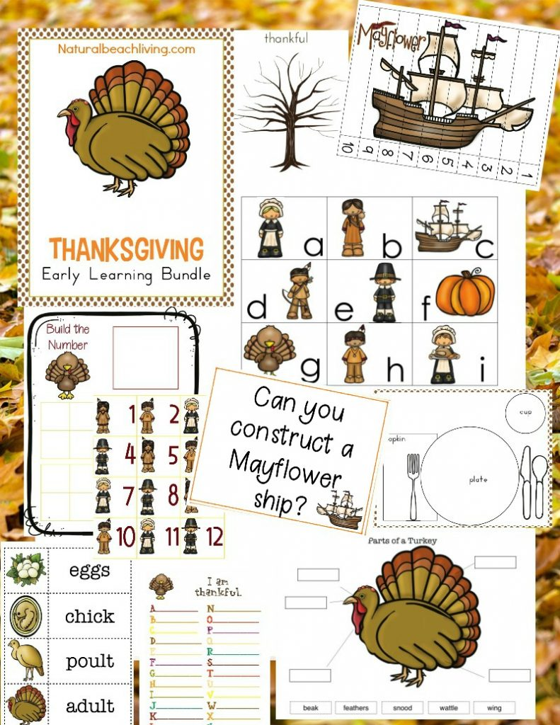 Thanksgiving preschool theme, You'll read Thanksgiving books, learn all about the turkey life cycle, embark on Mayflower STEM activities, make fall recipes and so much more.