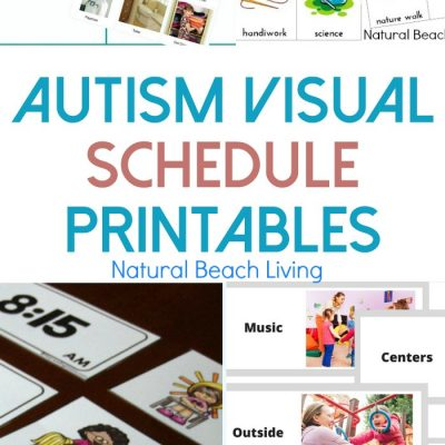 10+ Free Autism Visual Schedule Printables To Try Right Now
