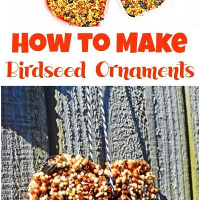 Easy Homemade Bird Seed Ornaments Recipe