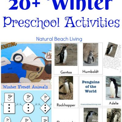 30+ January Preschool Themes and Activities Kids Love