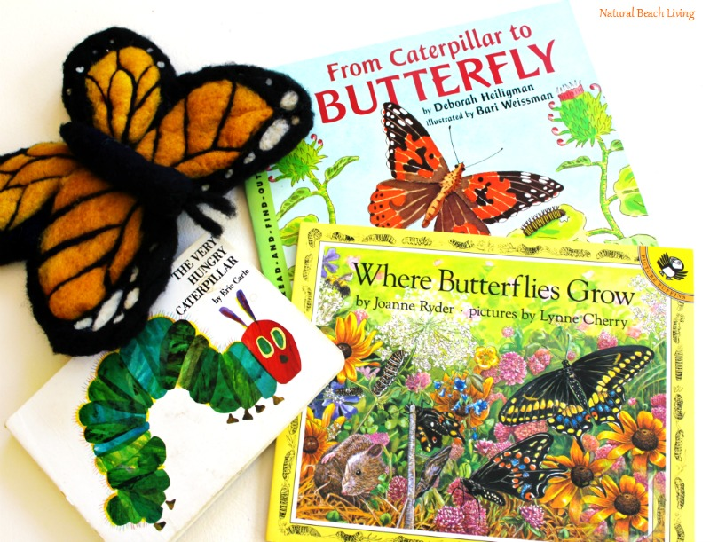 The Best Butterfly Life Cycle Activities for Kids, teach your kids about the butterfly life cycle in a fun, educational way. Plus add in hands-on activities, butterfly life cycle crafts, and free life cycle printables. Butterfly Life Cycle Activities Science, Butterfly Life Cycle Lesson Plans, Life Cycle of a Butterfly Activities for Preschool, Life Cycle of a Butterfly Activities for Kindergarten, First Grade, Second Grade, Natural Science and Literacy for Kids #Kindergarten #preschool #Montessori #Homeschool #Lifecycle #Scienceforkids