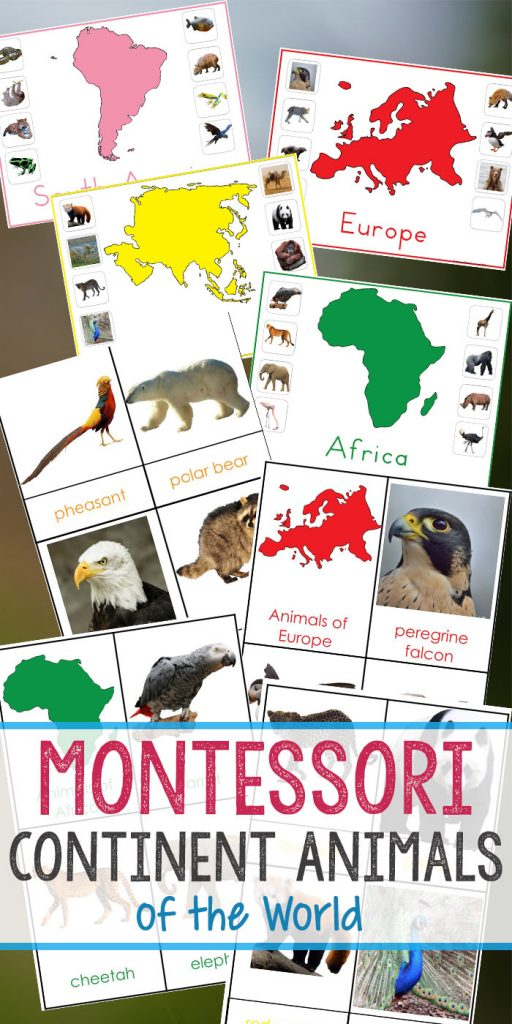 Montessori Animals and Continents Printables, Great Hands-on activities for learning all about animals and continents. Animals continents worksheet, animals and their continents activities, Montessori animals of seven continents, animal continents activity sheets, what animal can be found on every continent, Montessori continents printables