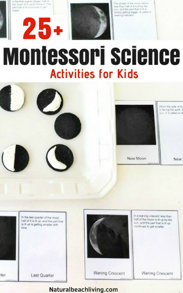 Fun Montessori science activities for seasons, themes, and a variety of hands on activities. Preschool Science experiments, Kindergarten Science Activities, Everything you need to start Montessori science in your home or classroom, Montessori science curriculum for 3-6 year olds, Montessori science experiments for 6-9 year olds , Life Cycles Activities for Kids, iAnimal Activities for Kids, Montessori toddler activities